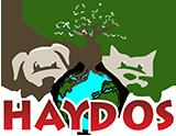 HayDos Retina Logo