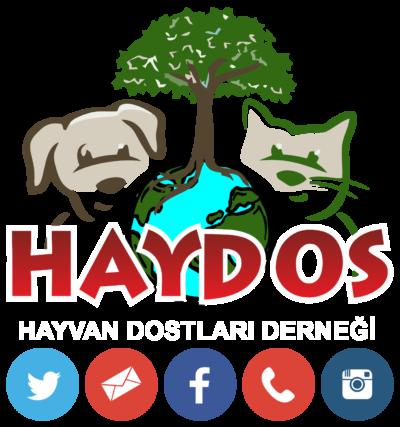 HayDos Logo and Contact